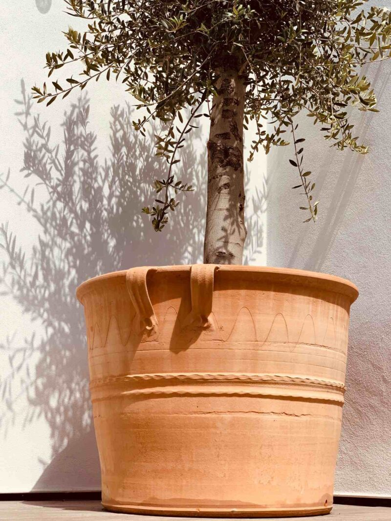 Fraski terracotta pot