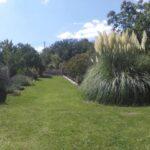 jardín central - copia