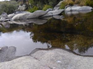 rio salvaje 2
