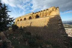 PALAMIDI ERASMUS