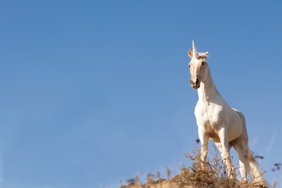 Myth or Reality – Can Greece build a Unicorn?