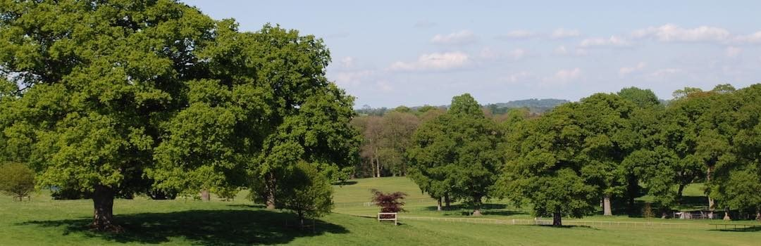 Chetwynd Deer Park – The Perfect Location for Proms & Prosecco in the Park