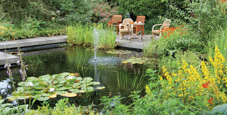 STUNNING PONDS & WATER FEATURES