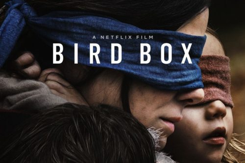 Publicity image for the film Bird Box from Netflix. Text reads: 'A Netflix Film. Bird Box' and image shows a close up of Sandra Bullock's blindfolded face from the side