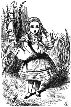 Line drawing of Alice caring a pig in a bonnet