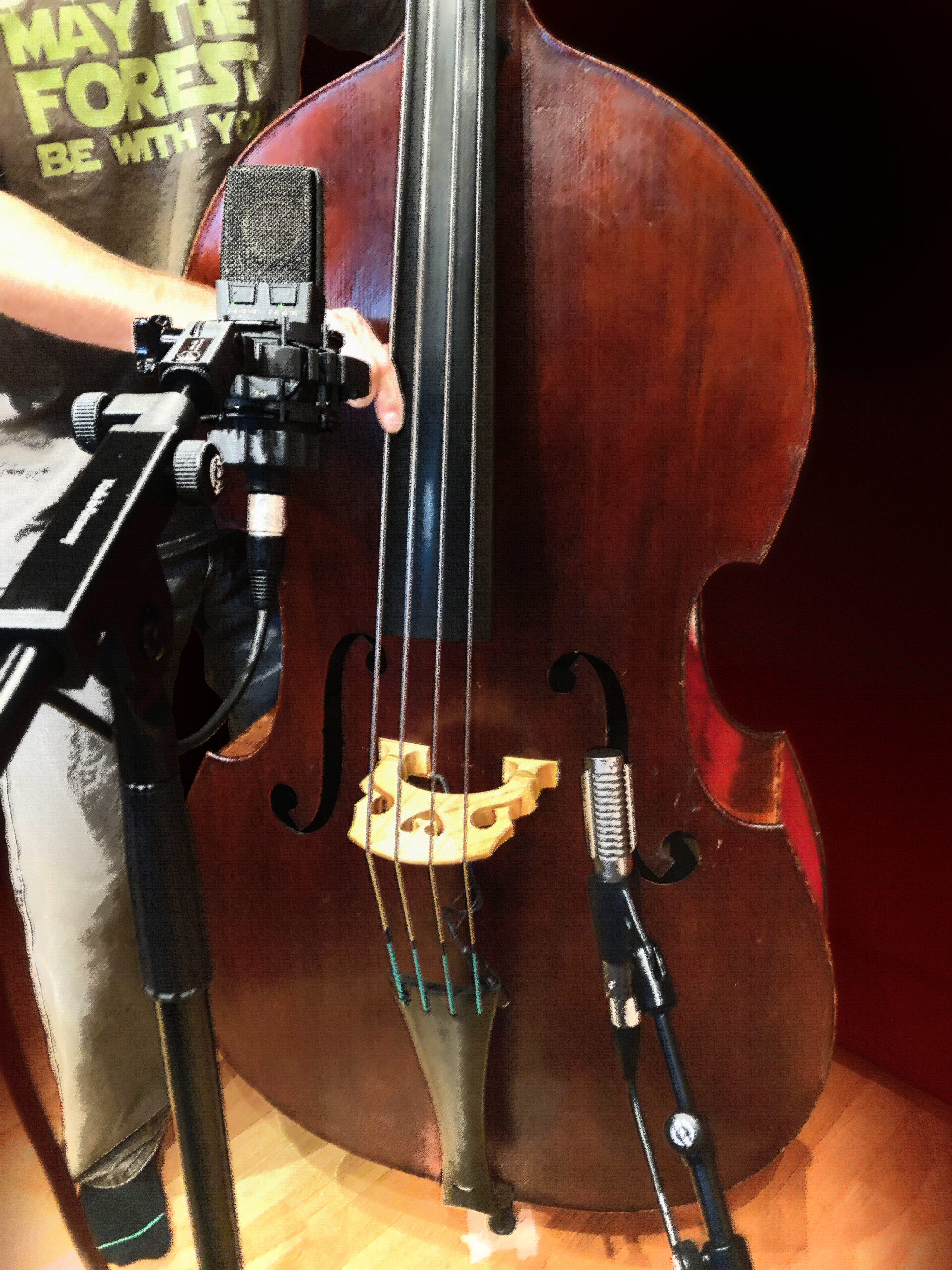 Slipway-Studio_Double-Bass_Recording