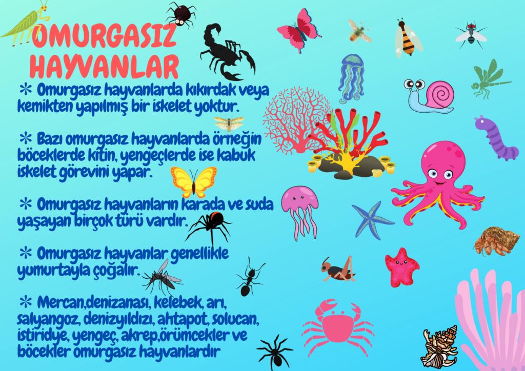 Fen Bilimleri Poster