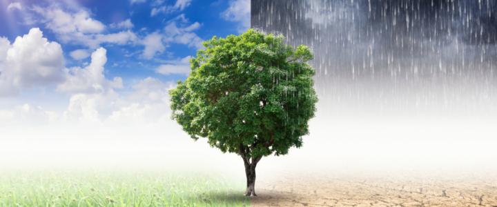 8.Sınıf 1.Ünite İklim ve Hava Olayları Konu Özeti