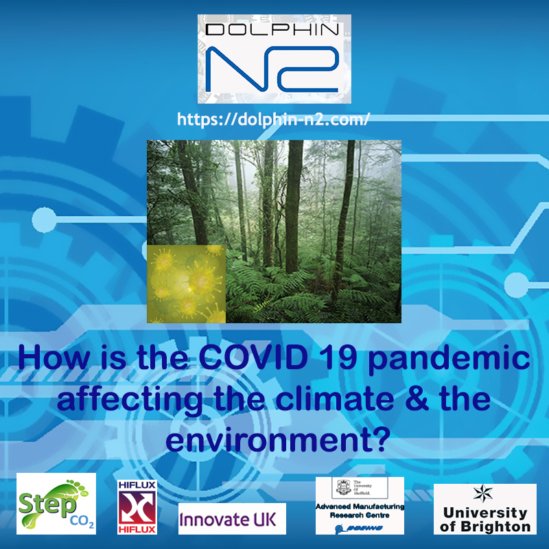 How is the COVID19 pandemic affecting the climate & the environment?