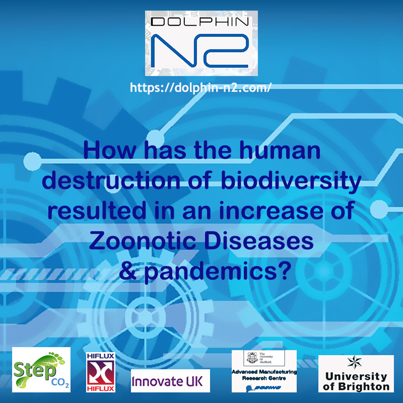 How has the human destruction of biodiversity resulted in an increase of Zoonotic Diseases & pandemics?