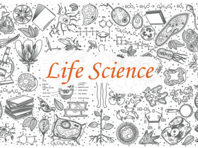 Life Science Grade 12 Paper 1 and Paper 2