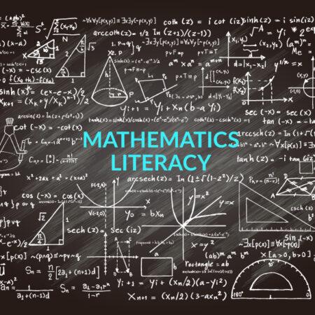 Mathematics Literacy Grade 12 Paper 1