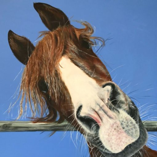 Benson Horse Animal Art Pankhurst Cards and Gifts