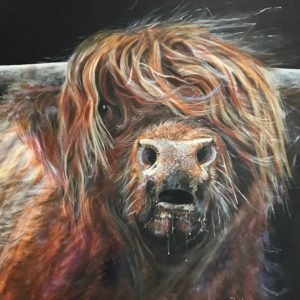 Highland Cow Colin Animal Art Gift Pankhurst Cards and Gifts