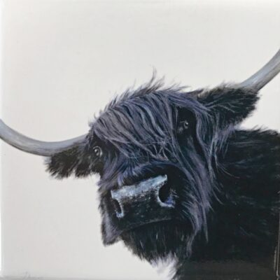 Highland Cow Dorothy Gift Magnet Pankhurst Cards and Gifts