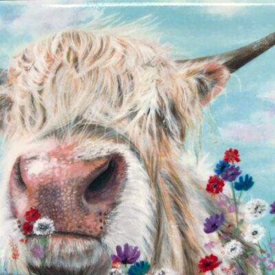 Highland Cow Douglas Gift Magnet Pankhurst Cards and Gifts