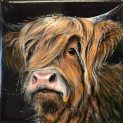 Highland Cow Duncan Gift Magnet Pankhurst Cards and Gifts