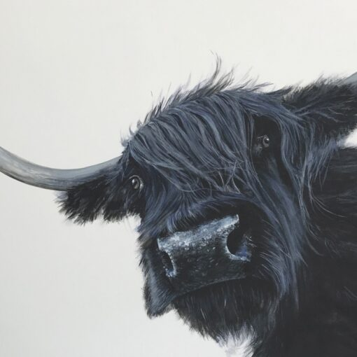 Highland Cow Dorothy Art Pankhurst Cards and Gifts