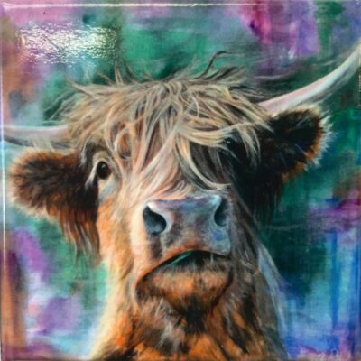Highland Cow Hector Gift Magnet Pankhurst Cards and Gifts