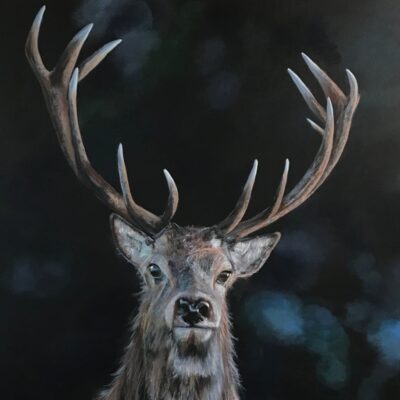 Laird of the Glen Stag Animal Art Pankhurst Cards and Gifts