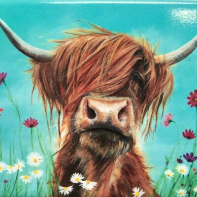 Highland Cow Rufus Gift Magnet Pankhurst Cards and Gifts