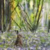 Spring Hare Animal Art Greeting Card Back Pankhurst Cards and Gifts