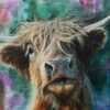 Highland Cow Hector Art Pankhurst Cards and Gifts