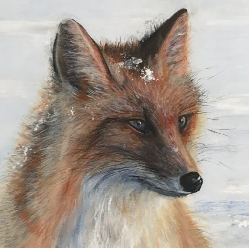 Red Fox Wistful Thinking Animal Art Pankhurst Cards and Gifts