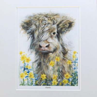 Highland Cow Charles Gift Art Print Pankhurst Cards and Gifts
