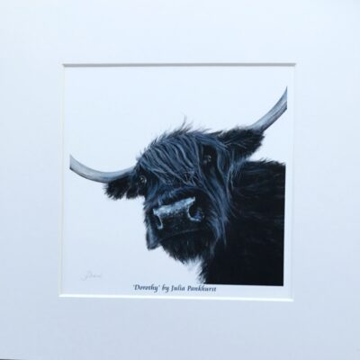 Highland Cow Dorothy Art Print Gift Pankhurst Cards and Gifts