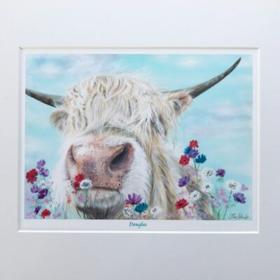 Highland Cow Douglas Gift Art Print Pankhurst Cards and Gifts