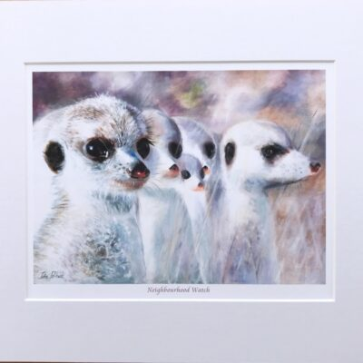 Pankhurst Cards and Gifts prints Neighbourhood Watch Meerkats Animal Art