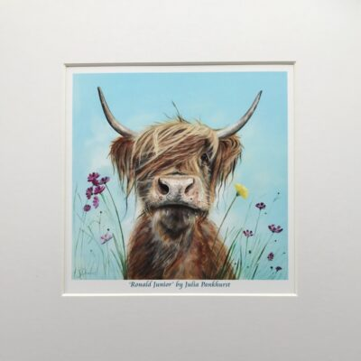 Highland Cow Ronald Jnr Art Print Gift Pankhurst Cards and Gifts