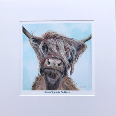 Highland Cow Ronald Art Print Gift Pankhurst Cards and Gifts