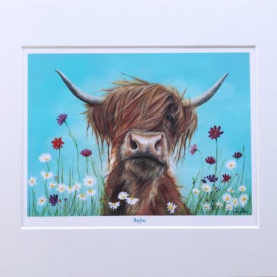 Highland Cow Rufus Art Print Gift Pankhurst Cards and Gifts
