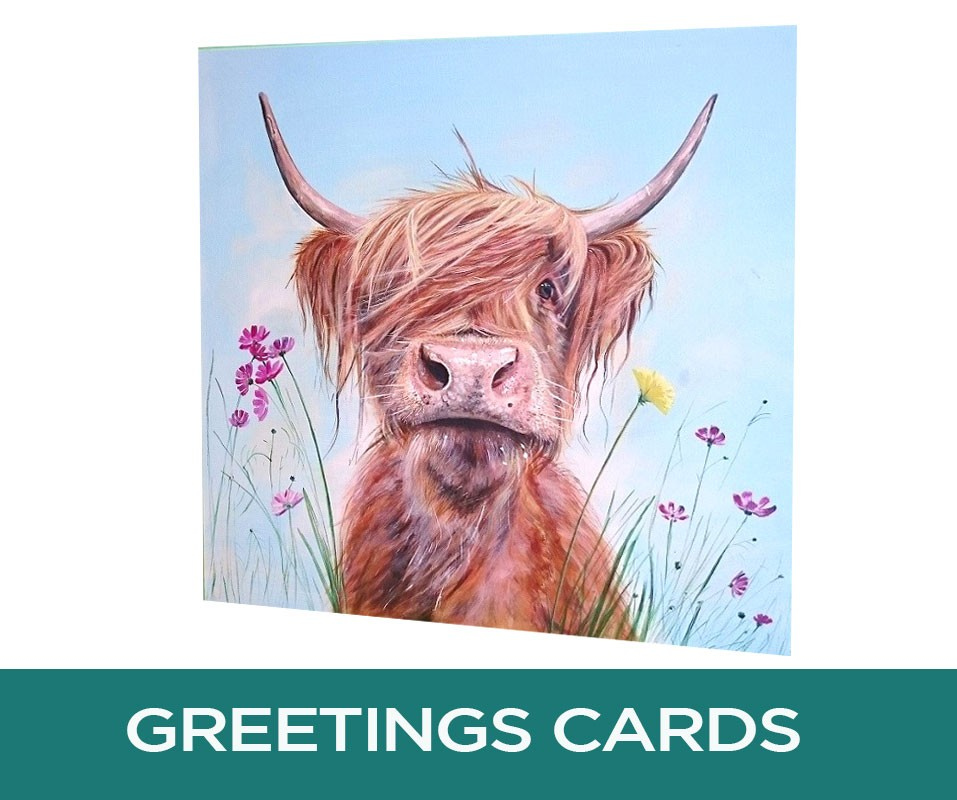 Ronald Jnr Highland Cow Art Greetings Cards Pankhurst Cards and Gifts