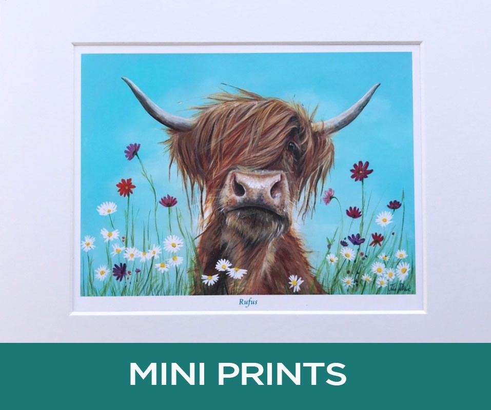 Highland Cow Rufus Mini Print Gift Pankhurst Cards and Gifts