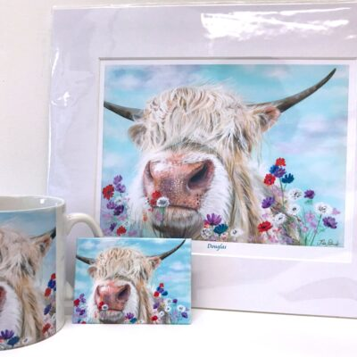 Highland Cow Douglas Gift Collection Pankhurst Cards and Gifts