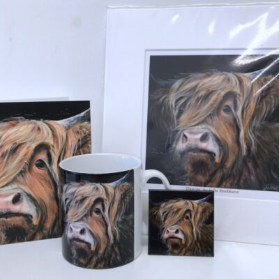 Highland Cow Duncan Gift Collection Pankhurst Cards and Gifts