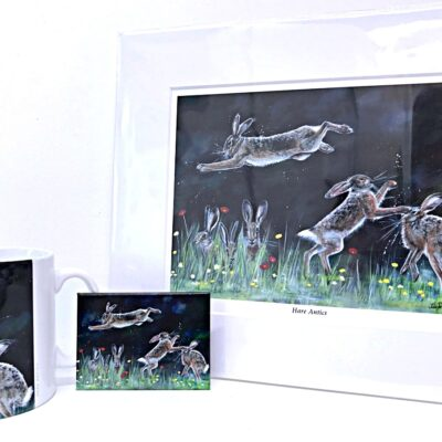 Hare Antics Gift Collection Pankhurst Cards and Gifts