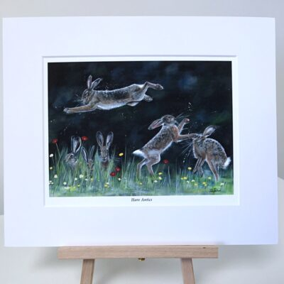 Hare Antics Animal Art Pankhurst Gallery