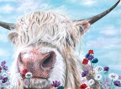Douglas Highland Cow Art Greetings Card Gift Pankhurst Cards and Gifts