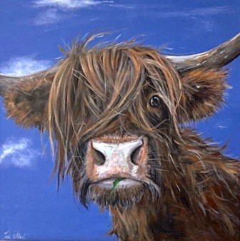 Gertie Highland Cow Animal Art Greetings Card Gift Pankhurst Cards and Gifts