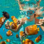 Snorkeling Water Activities - yachtrentaldxb.com