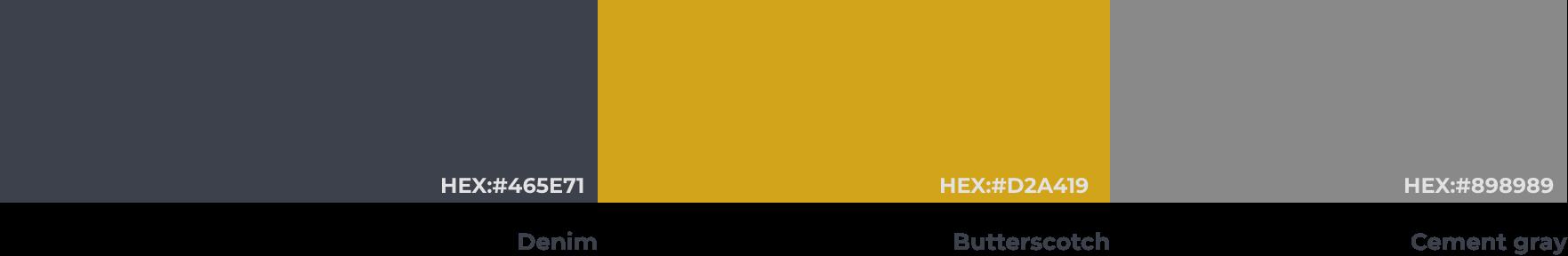 RizonX primary colours