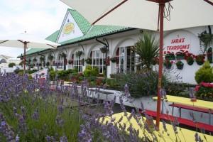 Alfresco Dining in the Flower Garden at Sara's Tearooms