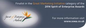 Spirit of Enterprise Awards Great Marketing 2014