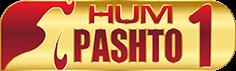 Logo - HUM TV – Watch Dramas Online