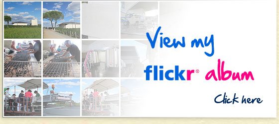 View my Flickr Album