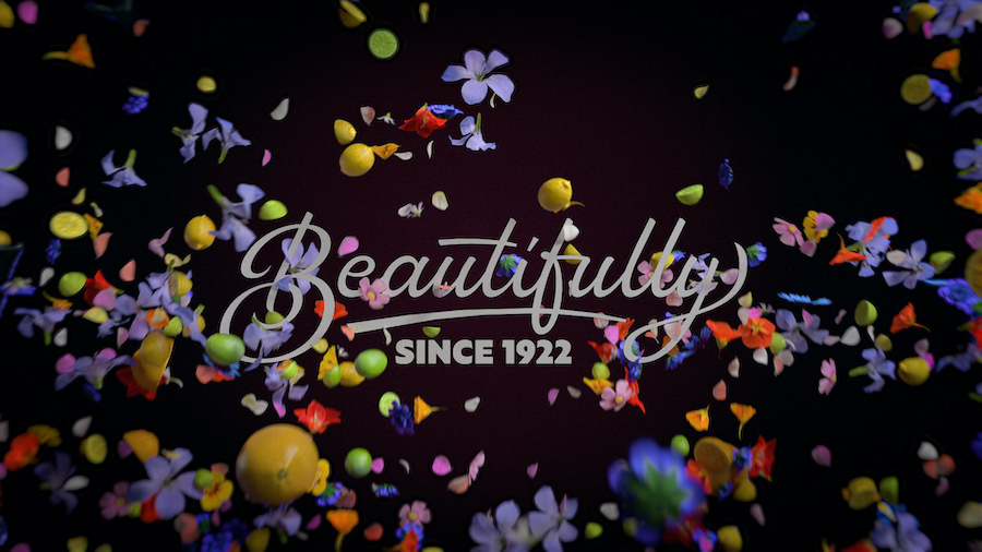 Zoflora TV Campaign Still - We are all one big beautiful home (4)